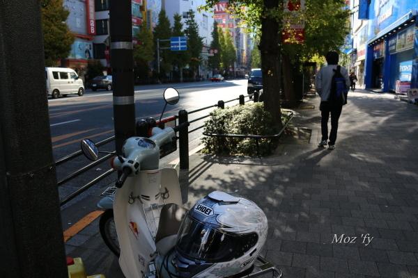 IMG_9940-12.jpg