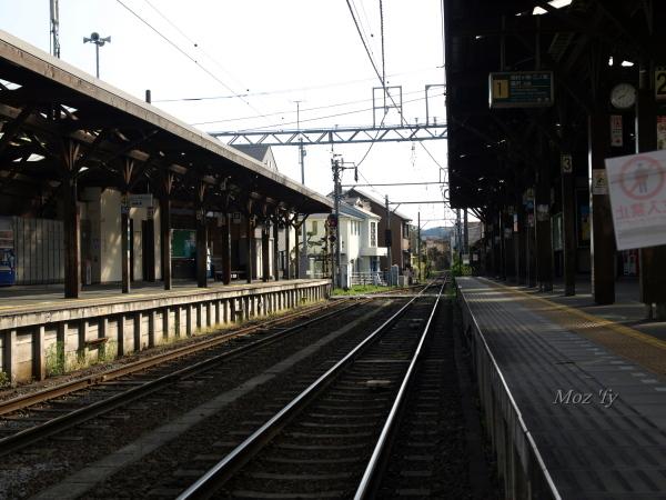 P3318807-12.jpg