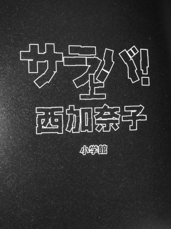 P4080004-12.jpg