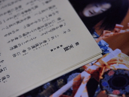 P8070005-12.jpg